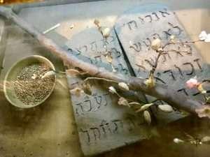 10 Commandments and Aaron's Staff
